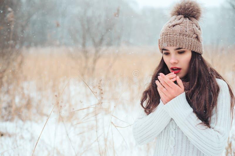 美丽的年轻女人画象的冬天关闭被编织的帽子和毛线衣走的室外 免版税库存照片
