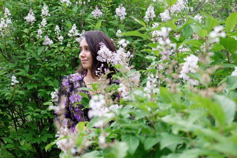美丽的年轻女人画象黑紫色礼服的在有开花的淡紫色灌木的一个庭院里 库存图片