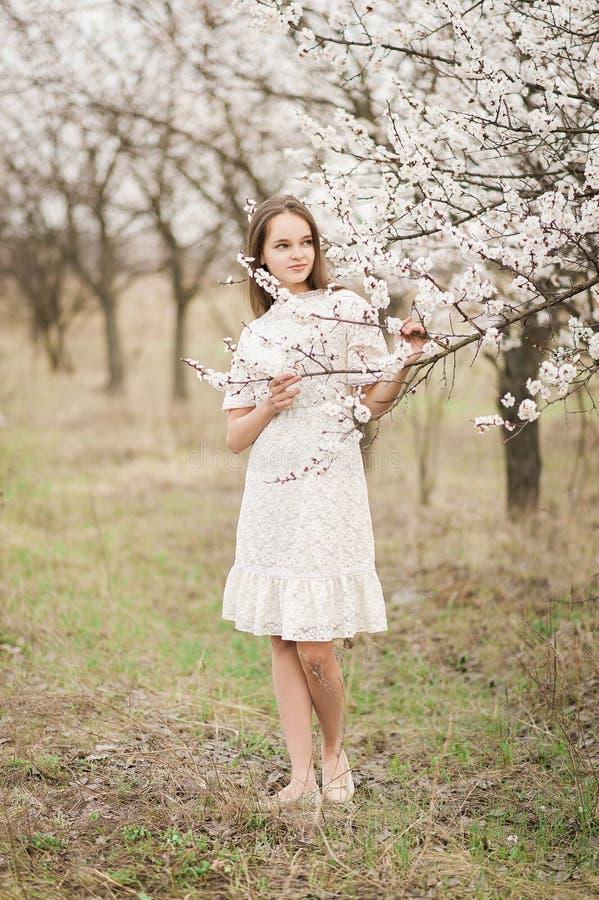 美丽的年轻嫩女孩在开花庭院在一个春日,落从树的花瓣,结束了她的眼睛和对负  库存图片