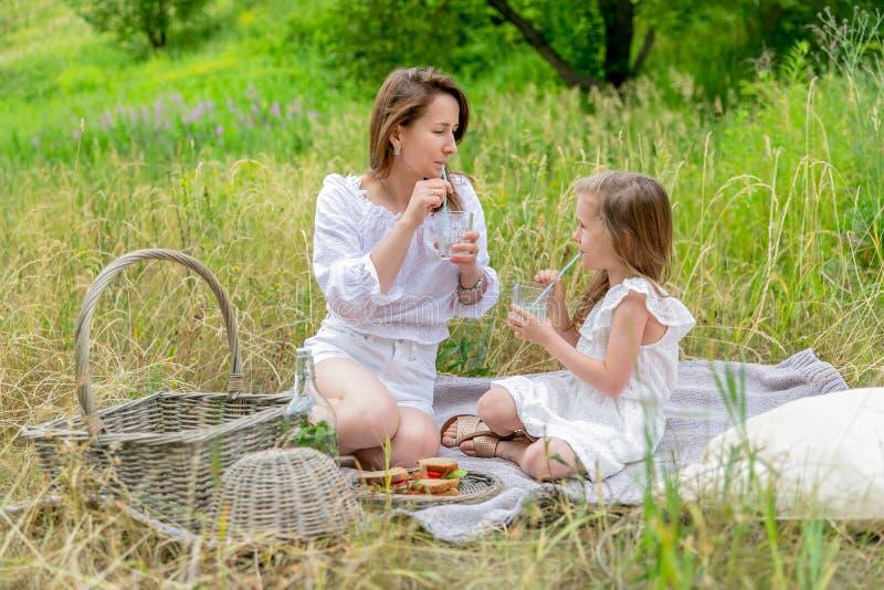 美丽的年轻母亲和她的小女儿获得乐趣在一顿野餐在夏日 他们坐格子花呢披肩和喝 免版税库存图片