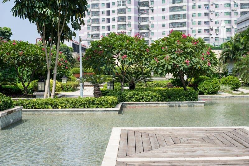 Download 美丽的庭院 库存图片. 图片 包括有 平台, 庭院, 晴朗, 布琼布拉, 板条, 会议室, 室外, 结构树 - 59111005