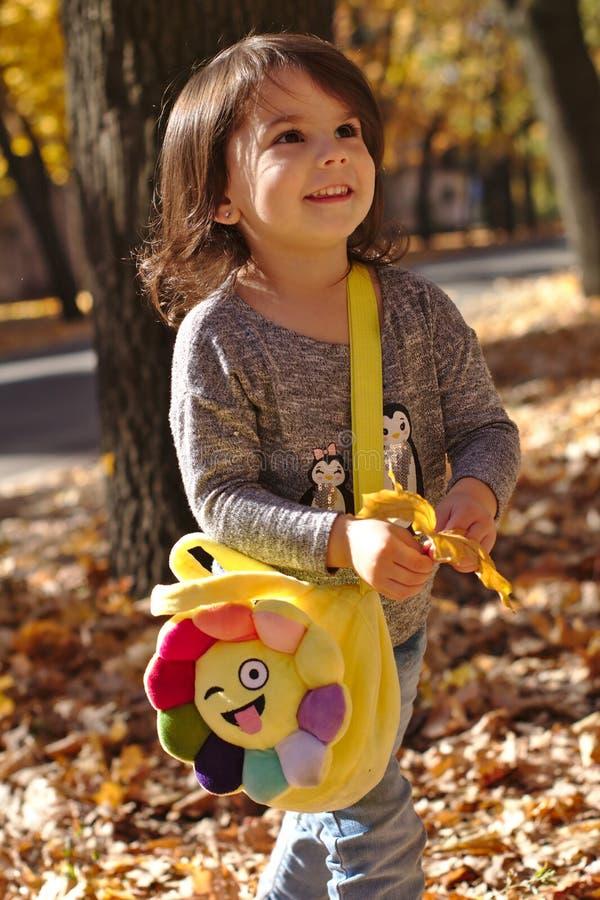 美丽的微笑的女孩在秋天公园 免版税库存图片