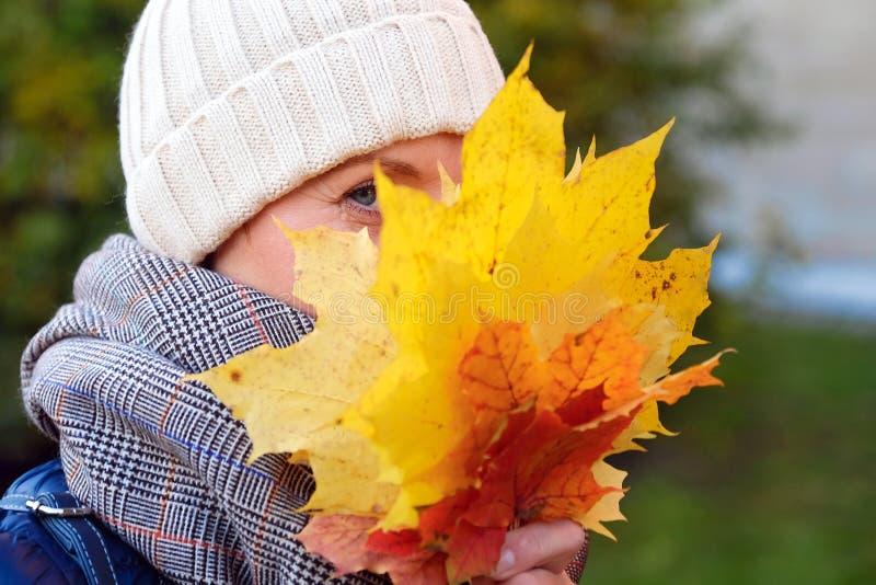 美丽的微笑的女孩掩藏她的在槭树黄色红色叶子后的面孔 免版税库存图片