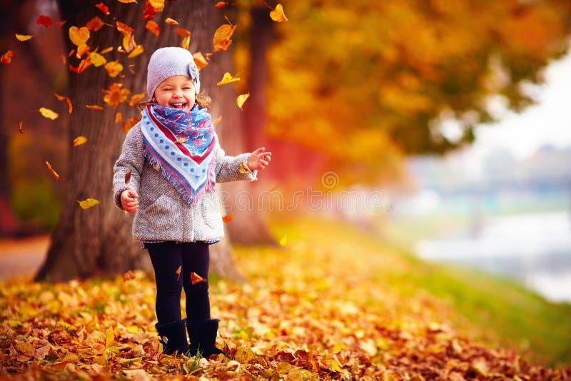 美丽的愉快的女婴获得乐趣在秋天公园,在下落的叶子中 免版税库存照片