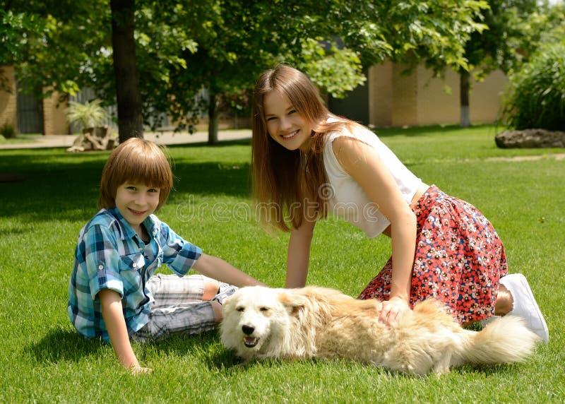 美丽的愉快的青少年的使用与狗outdoo的女孩和小男孩 免版税库存照片