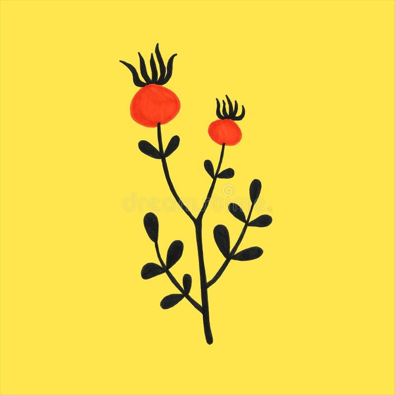 美丽的手拉的简单的原始花卉植物的狗上升了一套样式 秋天,秋天,收获 皇族释放例证