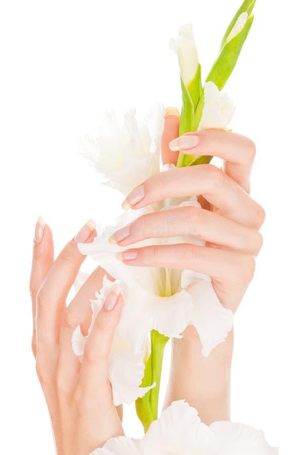 美丽的手指钉子 免版税图库摄影