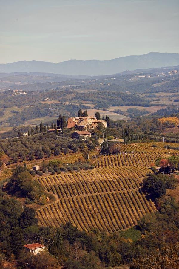 美丽的托斯卡纳的乡下和风景 葡萄园和柏 E 免版税库存图片
