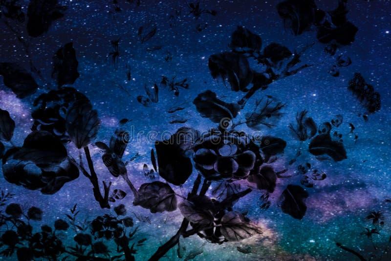 美丽的抽象树和花在五颜六色的桃红色蓝色紫色和太阳系行星背景和墙纸 库存照片