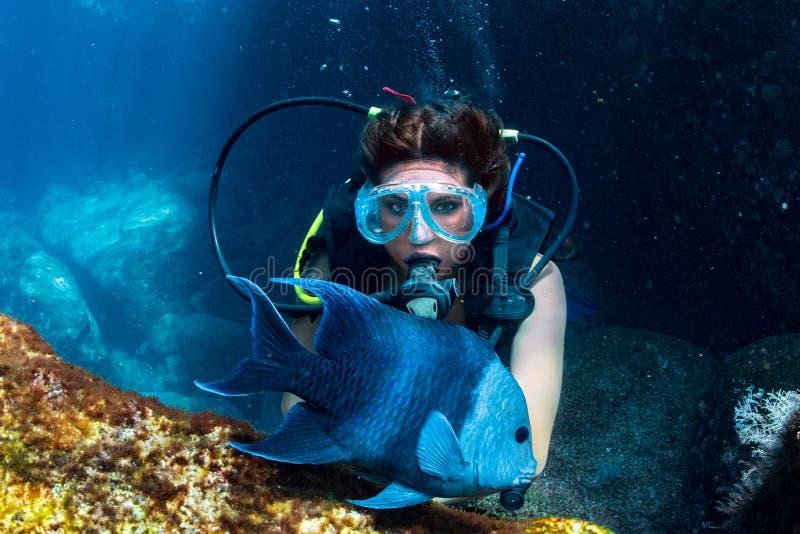 美丽的拉提纳潜水者女孩,当接触鱼时 免版税库存照片