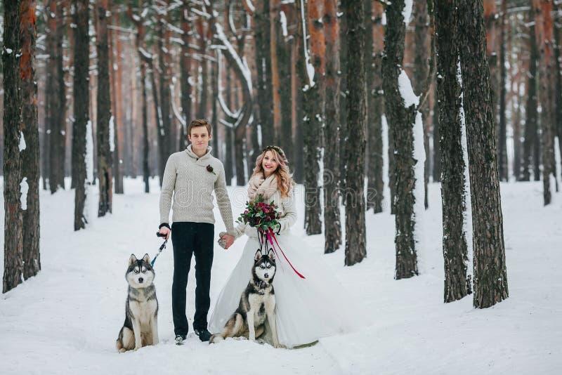 美丽的新娘和新郎与两西伯利亚爱斯基摩人在多雪的森林艺术品背景被摆在  免版税库存图片