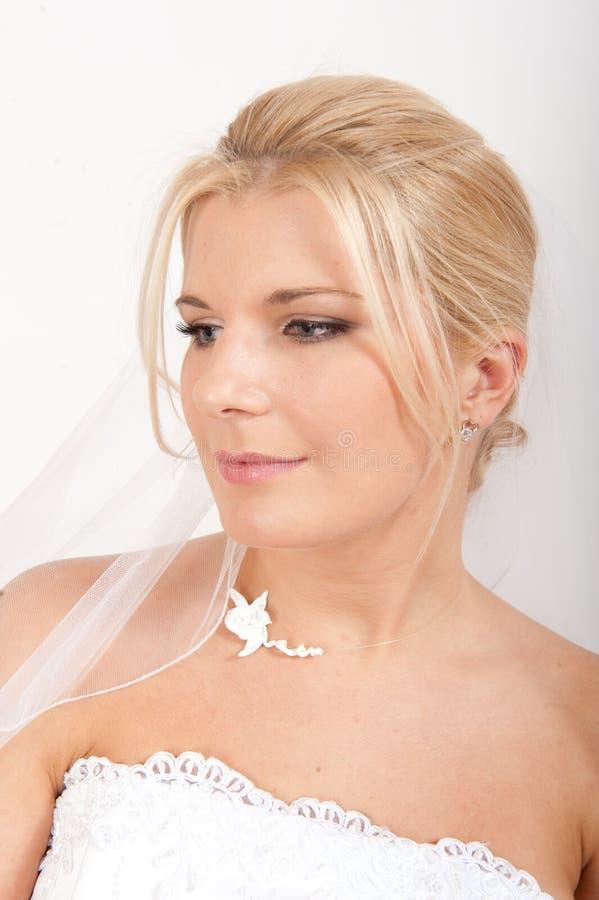 美丽的新娘她的面纱婚礼年轻人 库存图片