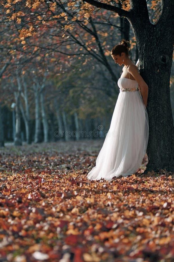 美丽的新娘年轻人 免版税库存照片