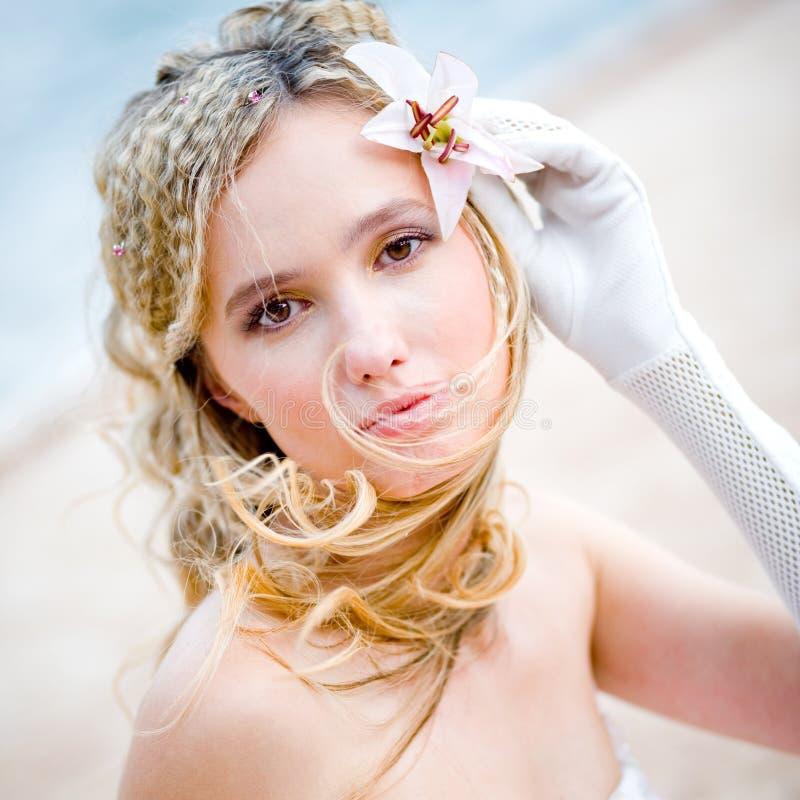 美丽的新娘百合 库存图片