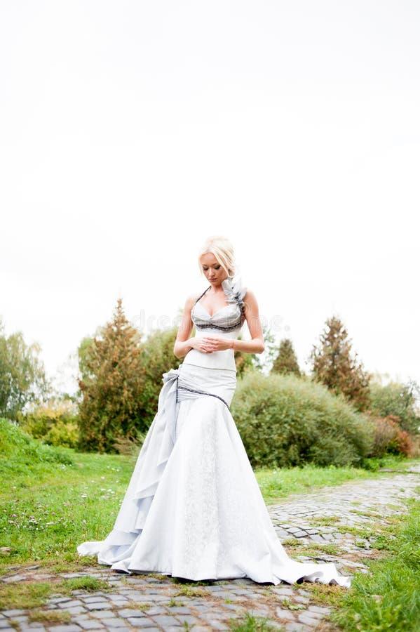 美丽的新娘肉欲的画象  库存照片