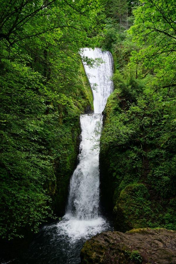 美丽的新娘面纱下跌瀑布全长沿哥伦比亚河峡谷俄勒冈瀑布 图库摄影