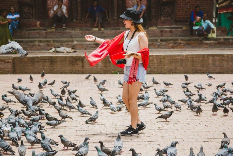 美丽的旅游女孩哺养的鸽子在加德满都Durbar Squar 库存图片