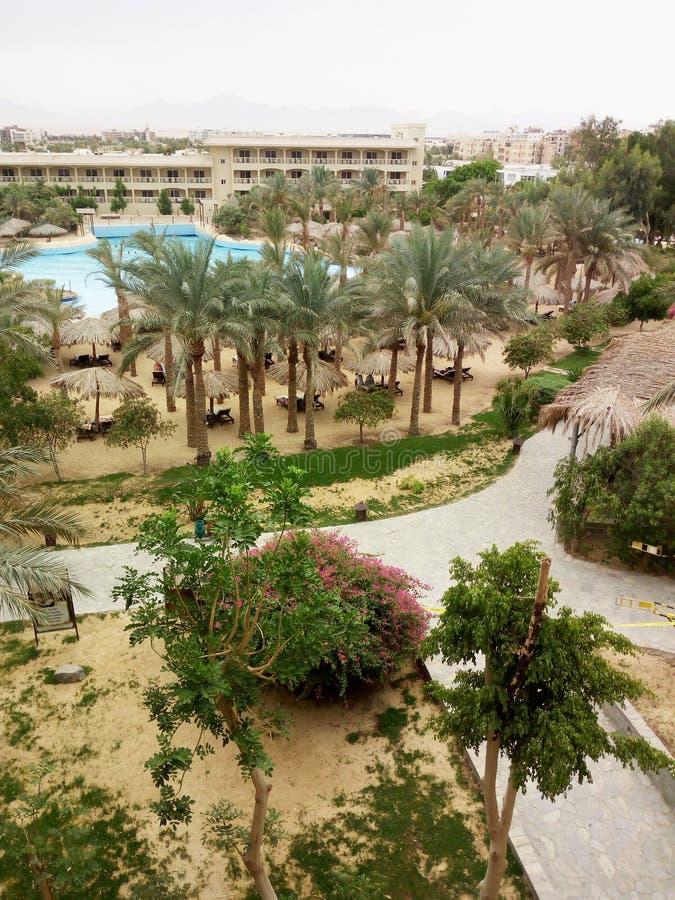 美丽的旅馆疆土在埃及洪加达 ?? 免版税图库摄影