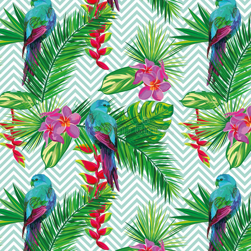 美丽的无缝的热带与棕榈叶、花和鹦鹉的密林花卉样式背景 抽象镶边 库存例证