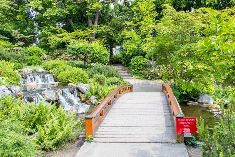 美丽的日本庭院和木桥 免版税库存图片