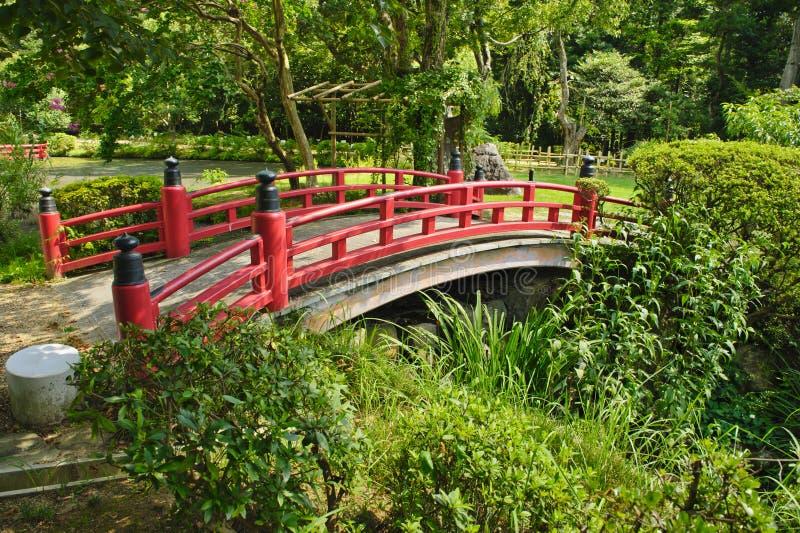 美丽的日本庭院 库存图片