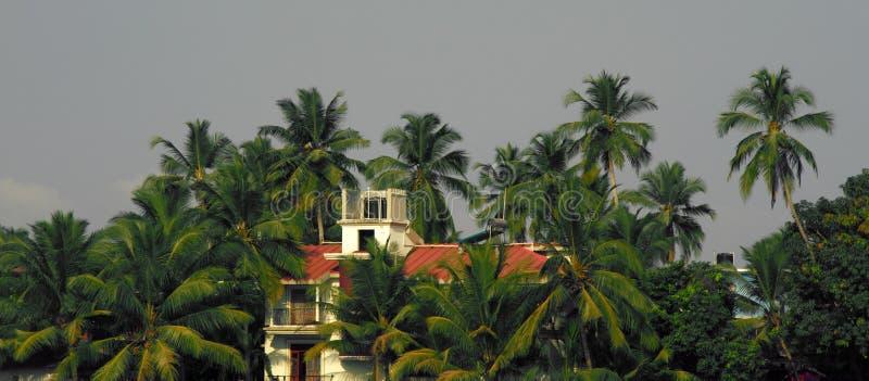 美丽的明亮地被绘的老房子在遮荫棕榈树丛里 图库摄影