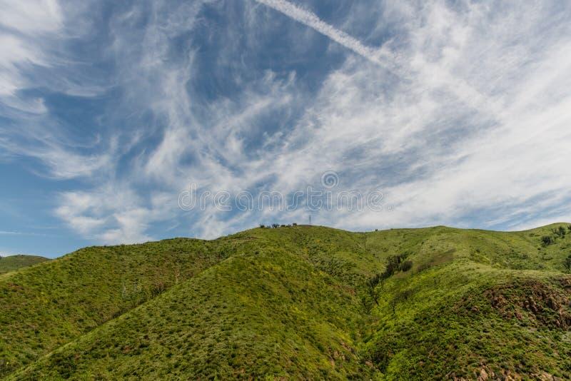 美丽的春天,加利福尼亚州的马里布美景 免版税库存图片