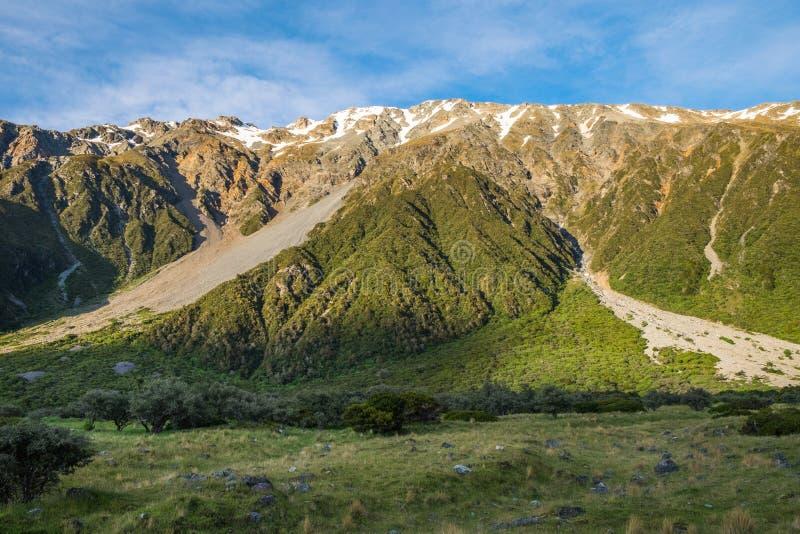 美丽的景色和冰川在库克山国家公园 库存图片