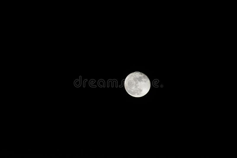 美丽的月亮 免版税库存照片
