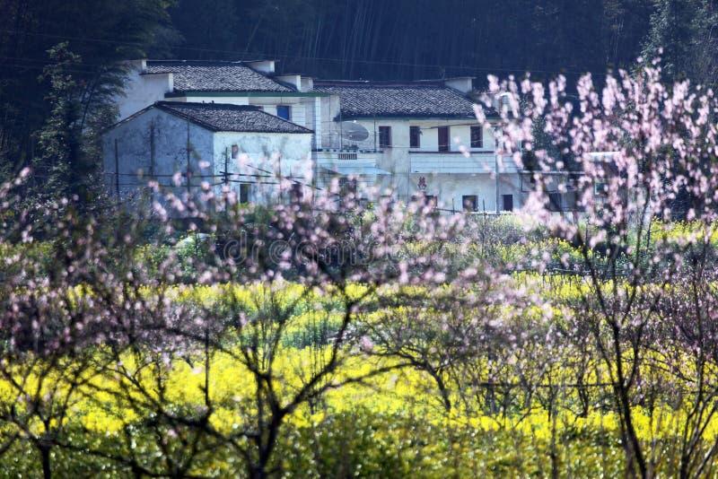 美丽的村庄 免版税图库摄影