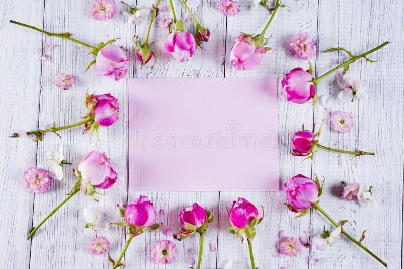 美丽的桃红色玫瑰框架  库存照片