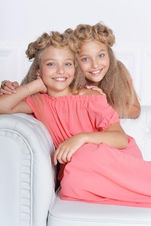 美丽的桃红色礼服的两个可爱的双姐妹 库存图片