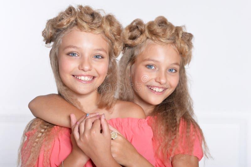 美丽的桃红色礼服的两个可爱的双姐妹 图库摄影