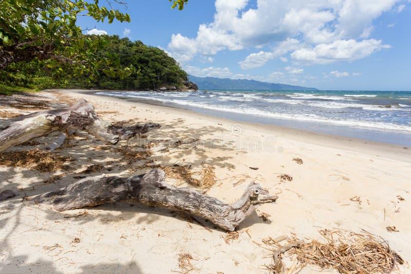 美丽的梦想天堂海滩,马达加斯加 库存图片