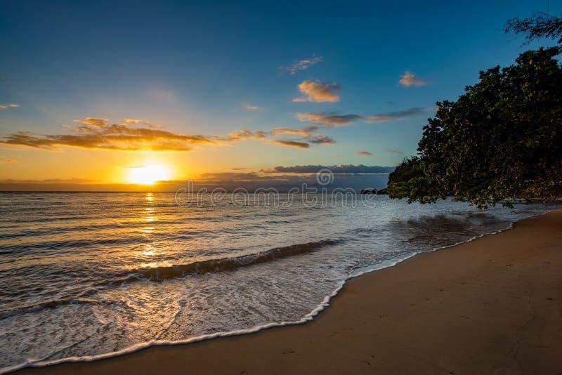 美丽的梦想天堂海滩,马达加斯加 免版税库存图片