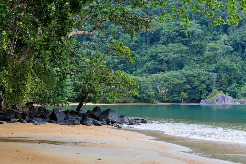 美丽的梦想天堂海滩,马达加斯加 图库摄影