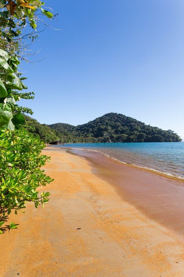 美丽的梦想天堂海滩,马达加斯加 库存照片