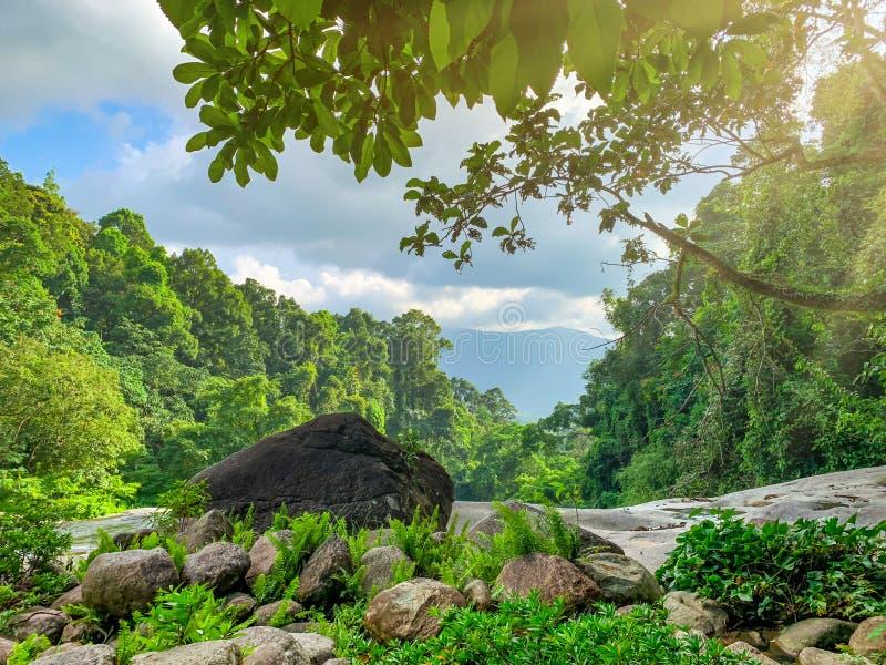 美丽的森林和山与天空蔚蓝和白色积云 热带绿色树森林自然背景 花岗岩岩石 免版税图库摄影