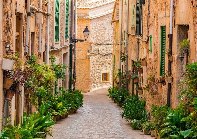 美丽的植物街道在马略卡海岛,西班牙上的法德摩萨村庄 图库摄影