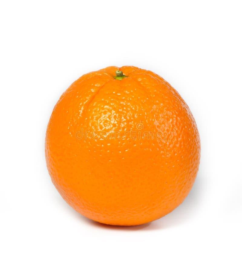 美丽的橙色多汁植物 库存照片