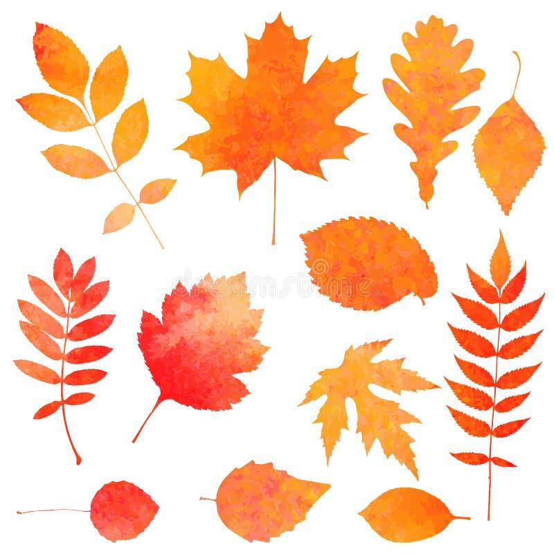 美丽的橙色秋叶的水彩汇集 库存例证