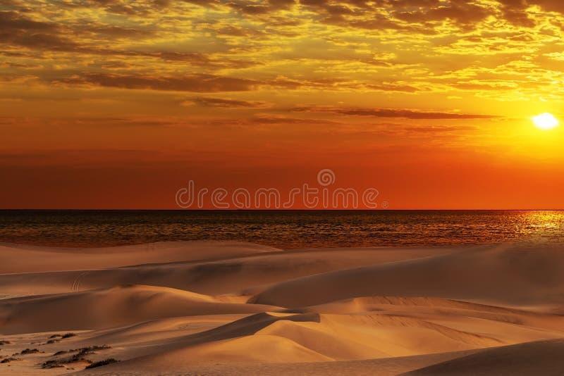 美丽的沙丘、海洋和红色日落在纳米比亚沙漠 库存图片