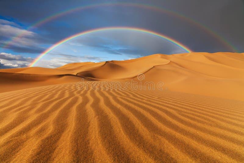 美丽的沙丘在撒哈拉大沙漠 库存图片