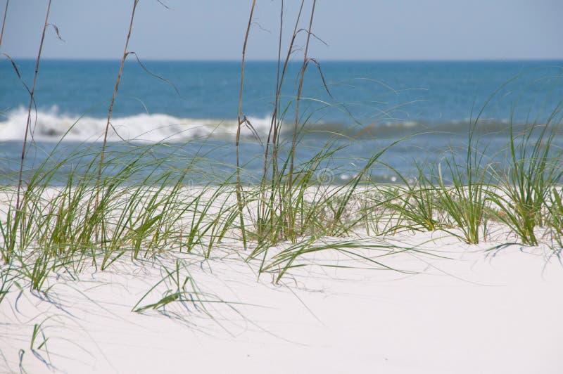 美丽的沙丘沙子 免版税库存照片