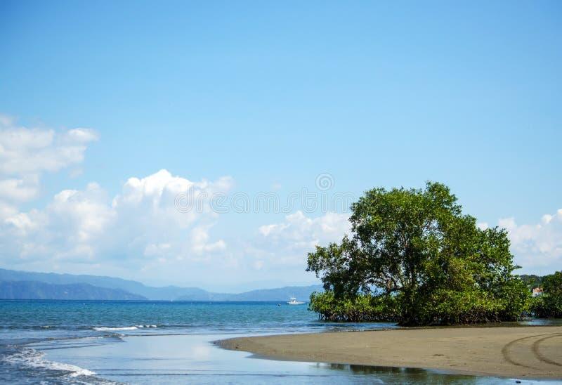 美丽的沙滩-哥斯达黎加 免版税库存照片