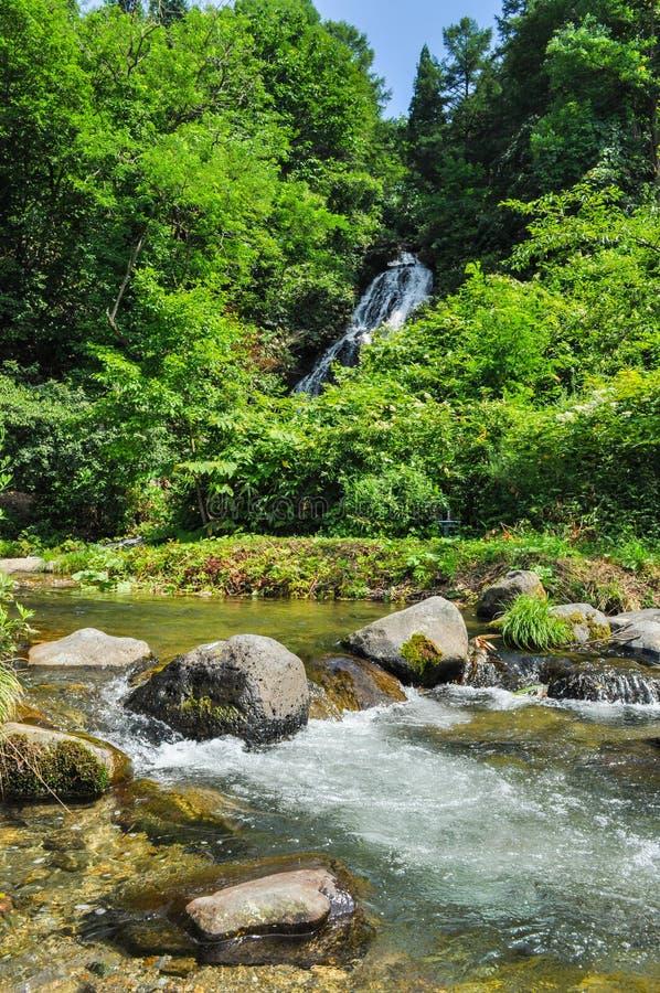 美丽的河和瀑布在乡下在日本 免版税库存照片