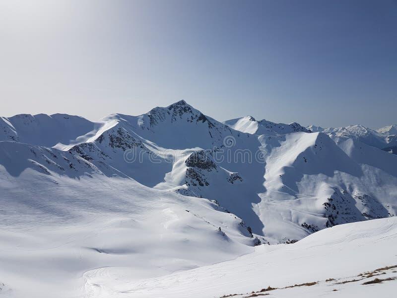 美丽的法国阿尔卑斯白色雪滑雪自然享受,看3月 免版税库存图片