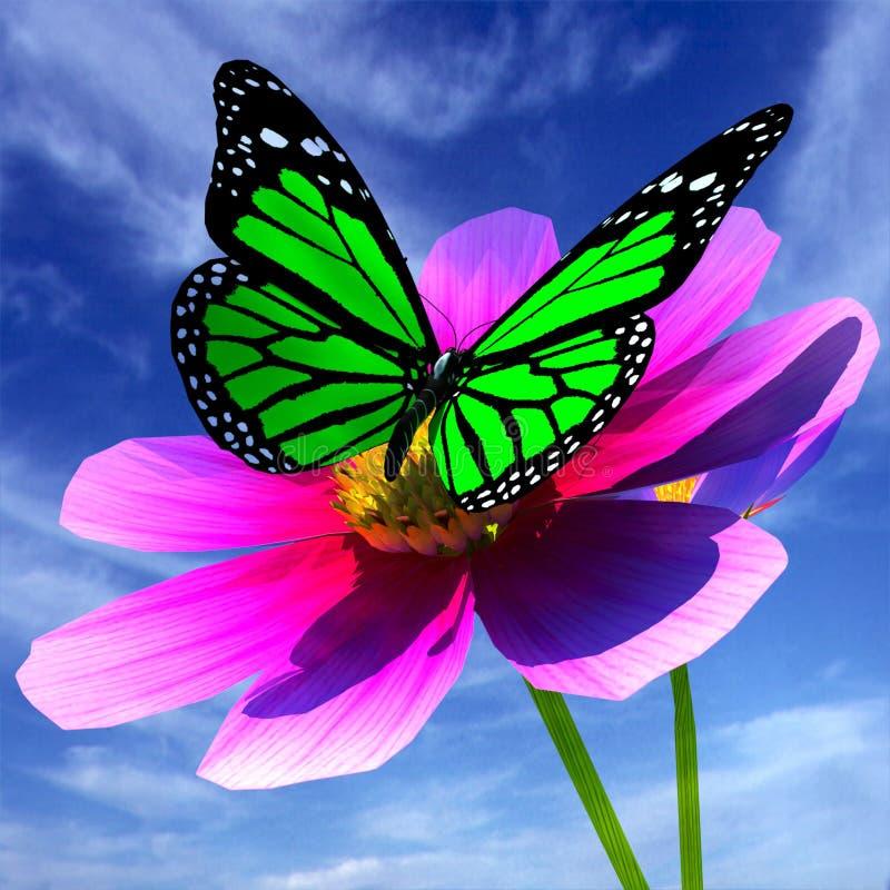 美丽的波斯菊花和蝴蝶 向量例证