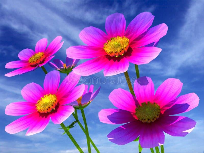 美丽的波斯菊花 向量例证