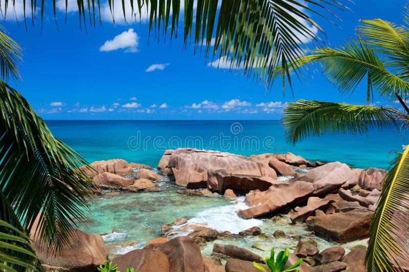 美丽的海岸岩石塞舌尔群岛 库存照片